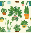 seamless pattern decorative houseplants vector image
