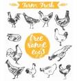 Set hand drawn eggs farm fresh chicken meat vector image