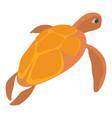 turtle icon cartoon style vector image