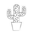 cactus office plant isolated icon vector image