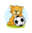 cat with soccer ball2 vector image vector image