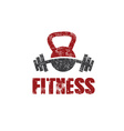 grunge kettlebell and barbell design template vector image