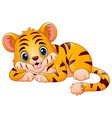 little tiger make a happy vector image
