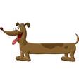 Sausage dog vector image vector image