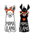Set with llama animal and lettering phrase mama
