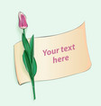 beautiful pink tulip with piece of paper for text vector image vector image