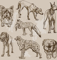 Dogs - An hand drawn pack vector image