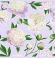 floral seamless pattern with white peonies spring vector image