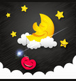 night time sky vector image