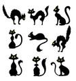set black evil cat for halloween card design vector image vector image