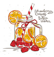 Sketch of Strawberry Orange detox water vector image vector image