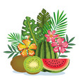tropical garden with kiwi and watermelon vector image vector image