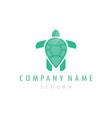 turtle logo vector image