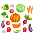 vegetable watercolor set of fresh organic veggies vector image