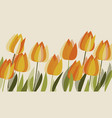 yellow tulip spring floral design element vector image vector image