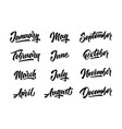 12 month handwritten lettering months year vector image vector image