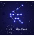 Aquarius Zodiac Sign Stars on the Cosmic Sky vector image