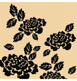 Black roses on isolated background vector image vector image