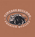 bulldog vintage retro badges logo icon vector image