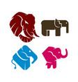 elephant head simple logo design template set vector image vector image