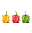 set of three realistic bell peppers vector image vector image