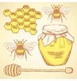 Sketch honey background in vintage style vector image