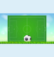 soccer field with grass and ball on blue backdrop vector image vector image