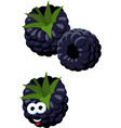 blackberries group of two ripe blackberries with vector image vector image