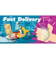 Fast delivery design vector image vector image