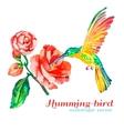 Hummingbirds and hibiscus Tropical flower bird vector image vector image