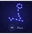 Pices Zodiac Sign Stars on the Cosmic Sky vector image