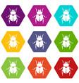 scarab icon set color hexahedron vector image vector image