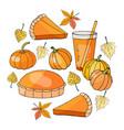 set of pumpkin elements pumpkin juice pie vector image vector image