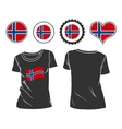 t-shirt with the flag of Norway vector image