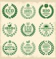 vintage green eco product labels set vector image