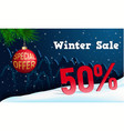 winter sale concept banner realistic style vector image