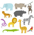 cute cartoon flat tropical and jungle animals set vector image
