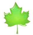 green maple leaf vector image vector image