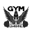 gym sign with spartan helmet and wings vector image