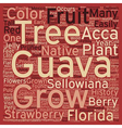 History Of The Guava text background wordcloud vector image vector image