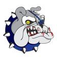 Pirate Zombie Bulldog vector image