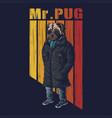 pug dog fashion vector image