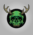 skull horn deer vector image