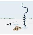 Winter fishing vector image vector image