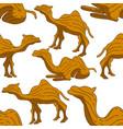 camel pattern seamless design animal decoration vector image