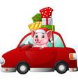 cartoon pig driving a car carrying a presents vector image vector image