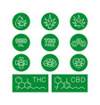 cbd oil benefits medical uses for oil vector image