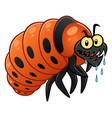 colorado potato beetle larva vector image vector image