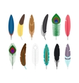 Colored feathers icons vector image vector image