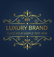 luxury brand logo template vintage design i vector image